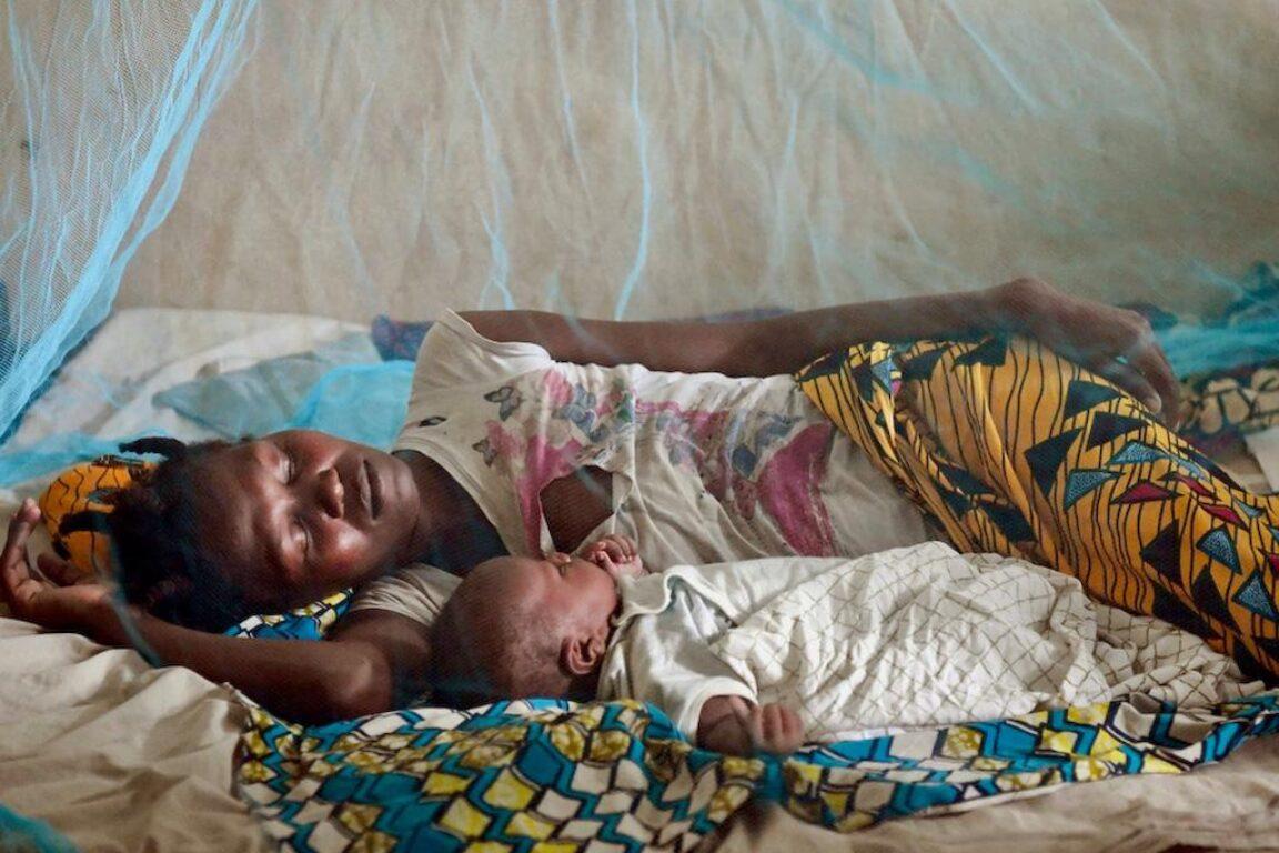foto La malaria